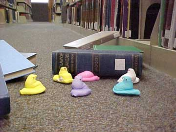 photo of Peeps having difficulty reshelving books