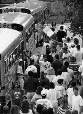 Buses in 1993
